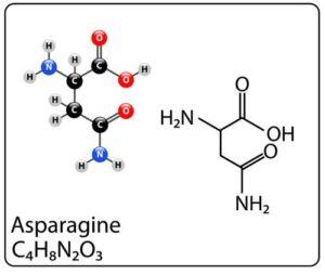 Kto powinien stosować asparaginę i jakie są tego skutki